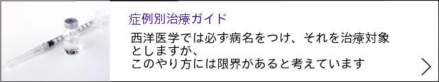 ★完成 640×120:症例別ガイド+→