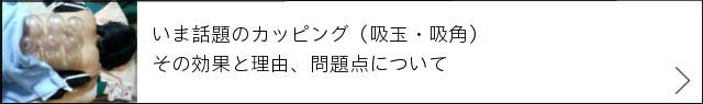 ★完成 640×95:カッピング+→