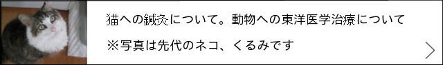 ★完成 640×95:動物について+→